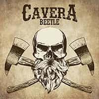 CAVERA BEETLE